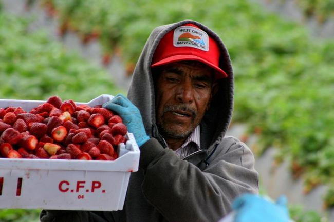 Trabajadores Migrantes a Trabajadores Migrantes