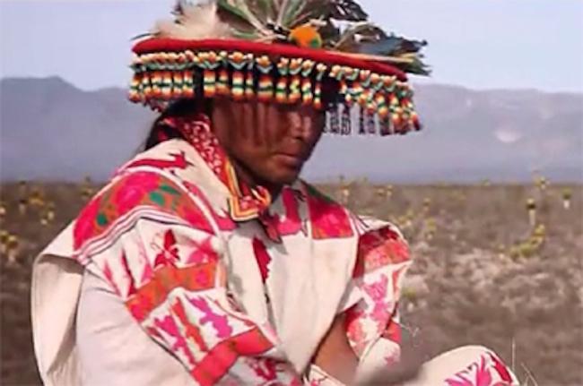 lengua indigena de los: